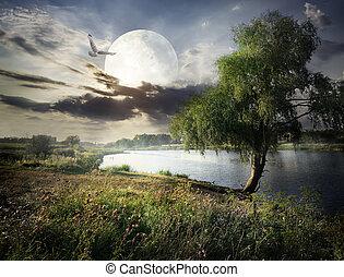 salice, luna