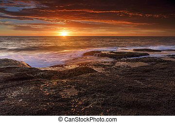 salida del sol, en, coogee, australia