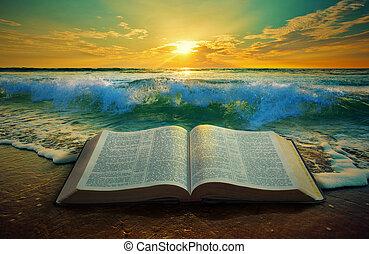 salida del sol, en, el, océano, con, un, biblia