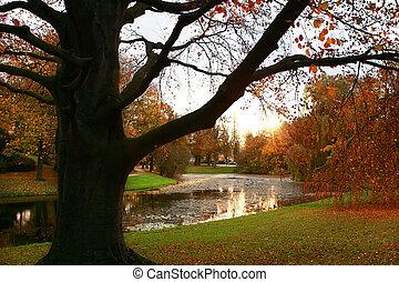 salida del sol, en el parque