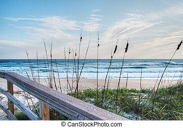 salida del sol, en, playa