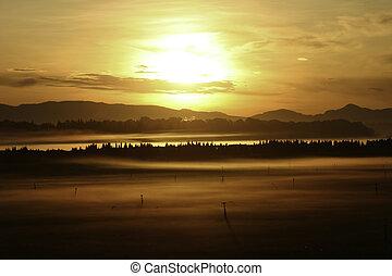 salida del sol, encima, el, campos