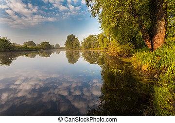 salida del sol, orilla, rayos, árboles de reflexión