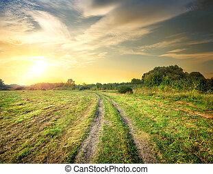 salida del sol, y, camino, en, el, campo