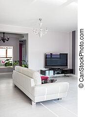 salle de séjour, tv, vibrant, -, petite maison
