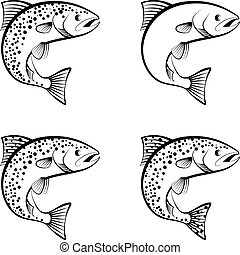 salmon and trout - clip art illustration