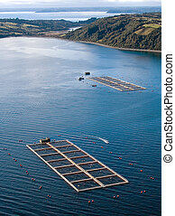 salmon cages on islands in southern Chile - aerial view of ...