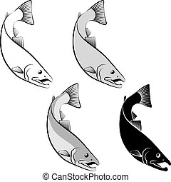 salmon - clip art illustration and line art