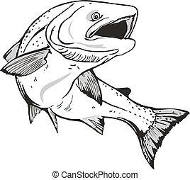 Salmon fish - King salmon fish. Hand drawn
