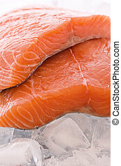 Salmon on Ice
