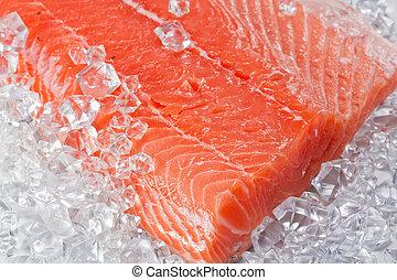 salmon, op, ijs