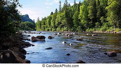 Salmon river landscape