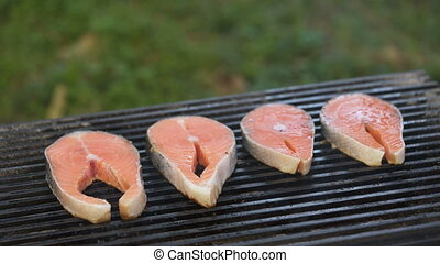 salmon steaks are prepared on the grill