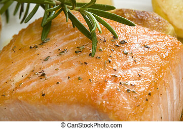salmon - baked salmon stake with rosemary close up shoot
