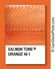 SALMON TONE ORANGE. Color sample design