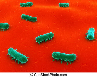 3d rendered illustration of some salmonelle bacteria