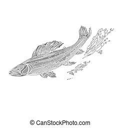 salmonidae, weinlese, forelle