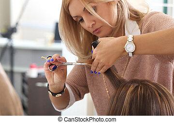 salon, beaty, hairstyle., coiffeur
