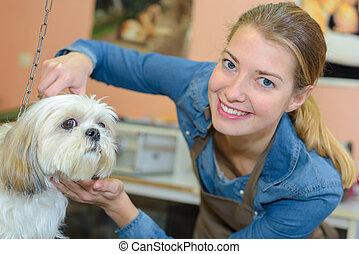 salon, coupure, obtenir, chien, cheveux, soins personnels