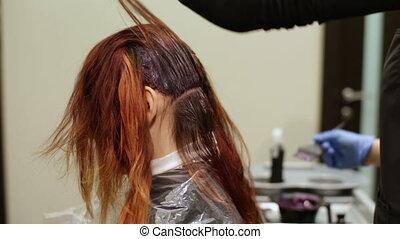 salon, styliste, beauté, longs cheveux, couleurs