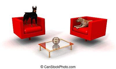 salotto, stanza, cani