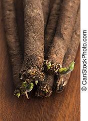 salsify, legumes, ligado, madeira