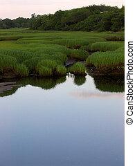 Salt Marsh - a salt marsh on Cape Cod
