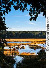Salt marsh - Framed shot of a salt marsh in Scarborough,...