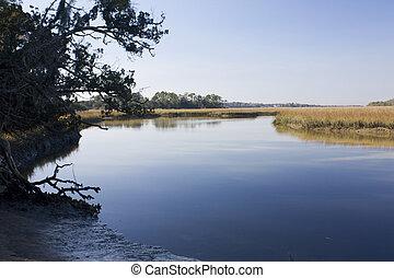 salt marsh scenic - low tide on coastal Florida salt marsh
