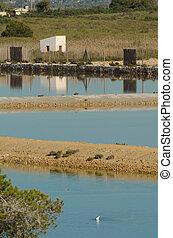 Salt marsh - Traditional salt marshes, a sunny Mediterranean...