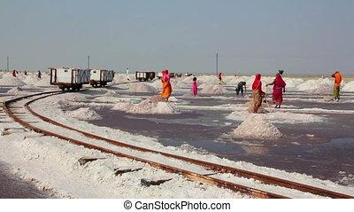 salt mining on Sambhar lake in India