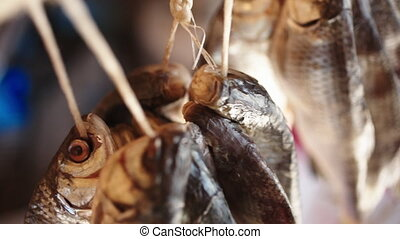 salted fish hanging dried