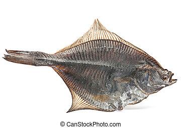 Salted flatfish fish closep isolated on white