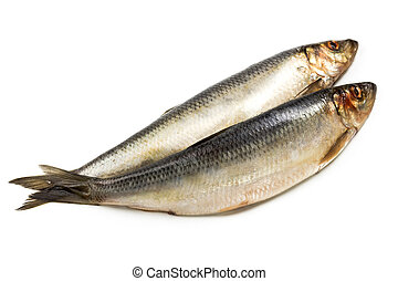 Salted herring isolated on white - Salted herring fish...
