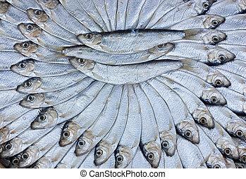 salted sardines - traditional preparation of mediterranean...