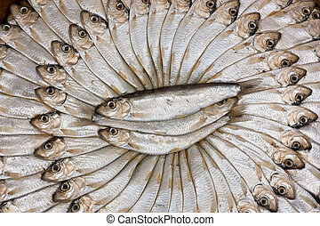 salted sardines - traditional preparation of mediterranean ...