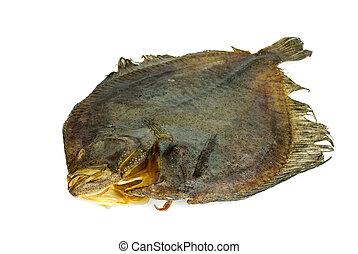 Salted turbot flatfish over the white background