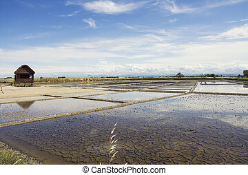 saltern of Cervia, Italy