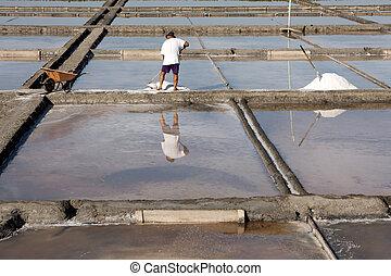 Saltfarmer harvesting the salt