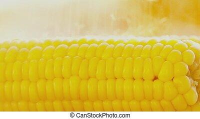 Salting freshly cooked boiled corn cob close-up shot -...