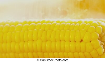 Salting freshly cooked boiled corn cob close-up shot -...