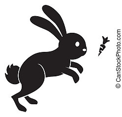 salto, carota, coniglio