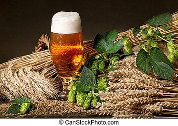 saltos, cerveza, cebada