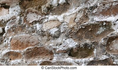 saltpetre - Potassium nitrate on ancient wall