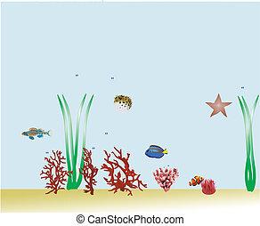 Saltwater Aquarium background