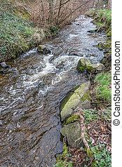 Saltwater Park Stream 2