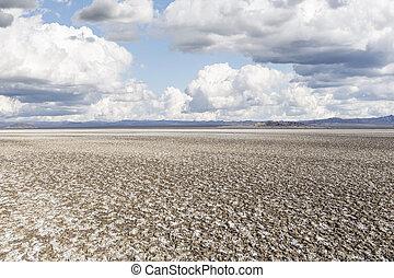 Salty Desert Dry Lake Mud Flats - Salty dry lake salt flats...