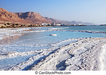 Dead Sea salt on coast and in water