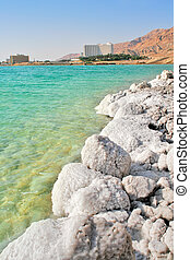 Salty shores on Dead Sea in Israel. - Vertical oriented...