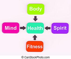 salud, diagrama, actuación, mental, espiritual, físico, y,...
